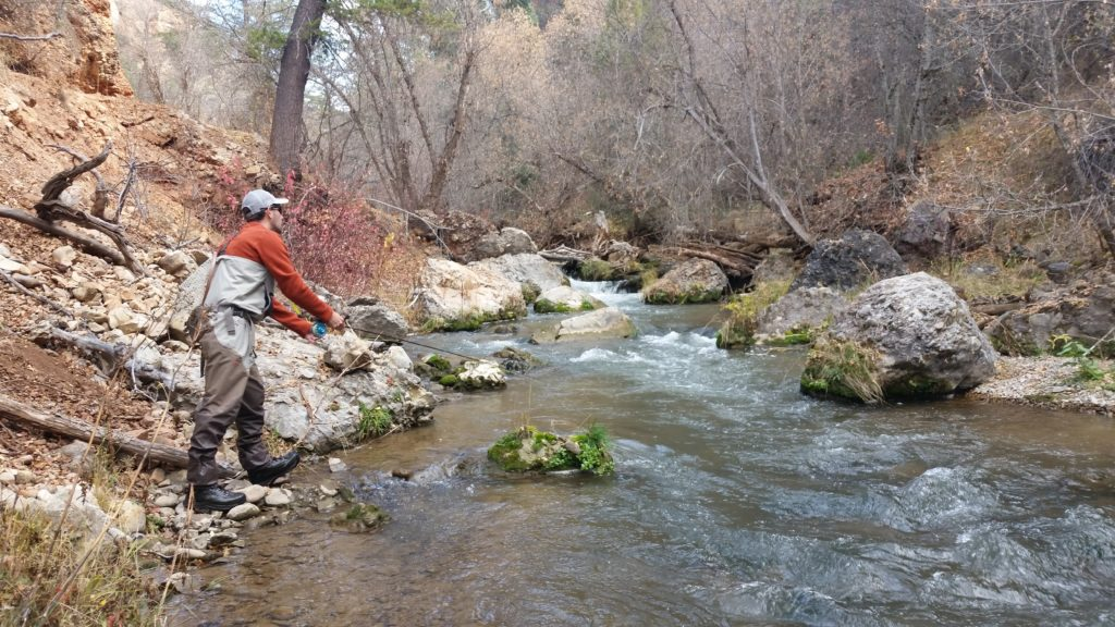 Report for provo river utah fly fishing simply fly for Utah fly fishing report
